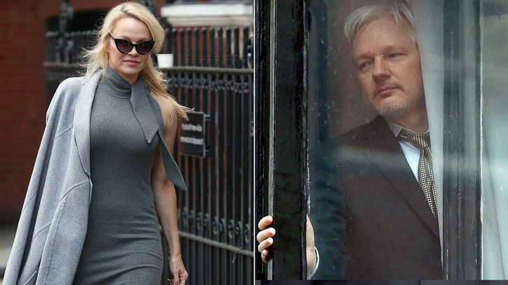 Pam Anderson and Julian Assange Rumored Romance: What We Know