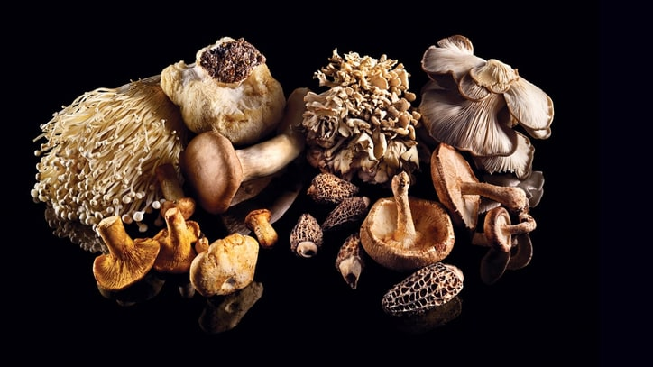 From Morels to Maitake: A Complete Guide to Cooking Mushrooms
