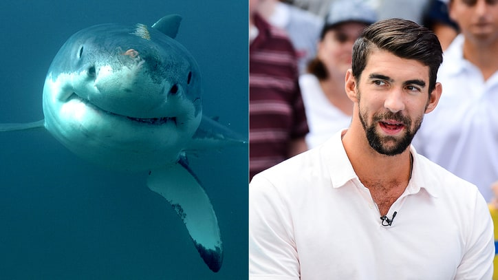 Michael Phelps 'Loses' to Great White Shark in Fake Race