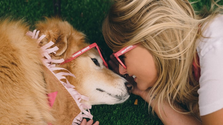 Miranda Lambert to Lead CMA Fest Dog Parade: Ram Report