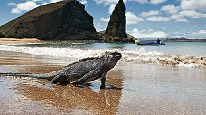 Seven Days in the Galapagos Islands