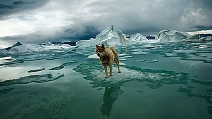 Adventures in the Extreme North: Stunning Photos from Sebastian Copeland's 'Arctica'