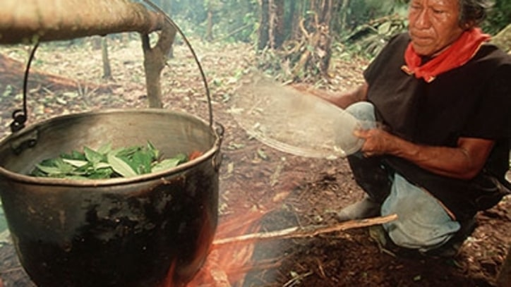 Down the Monkey Hole: One Man's Long, Strange Ayahuasca Retreat