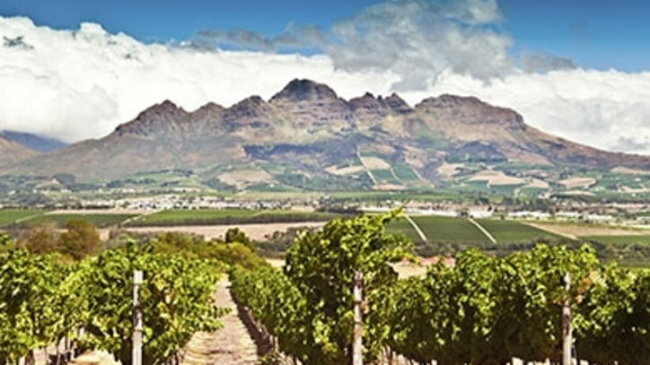 Exploring South Africa's Wine Valley