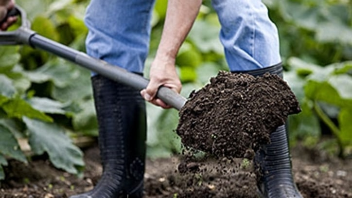 How to Get Your Garden's Soil in Order