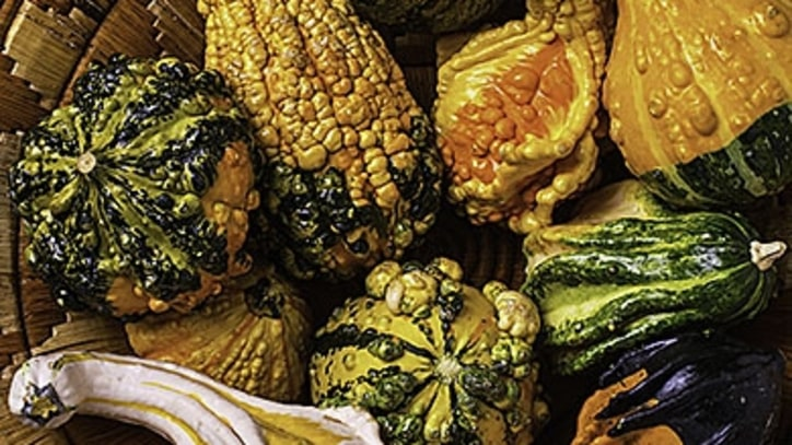 Ask a Chef: How to Cook Gourds