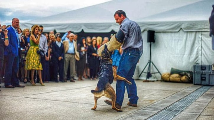 A Navy SEAL's 5 Tips to Train Your Dog