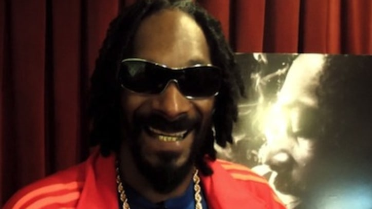 Snoop Lion Explains Anti-Violence Song 'No Guns Allowed'