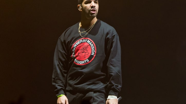 Drake Has Received a $300,000 Government Grant for OVO Fest 2014