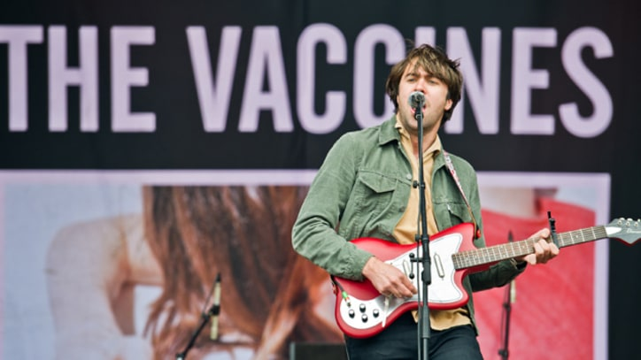 The Vaccines 'Tiger Blood'