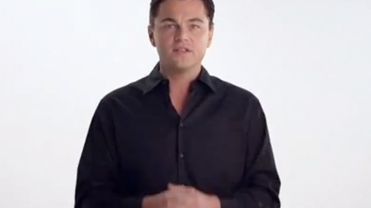 Leonardo DiCaprio, Joseph Gordon-Levitt and More Urge You to Vote