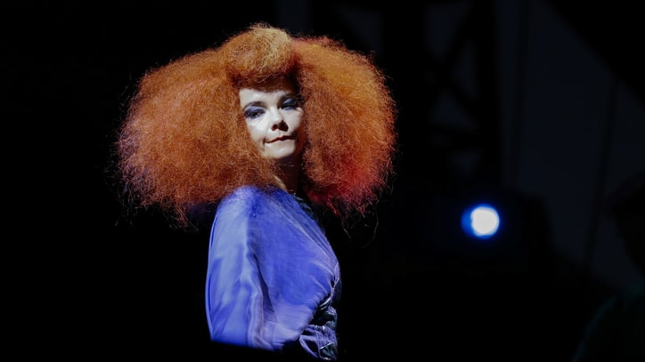 Bjork's 'Biophilia' Heading to European Classrooms