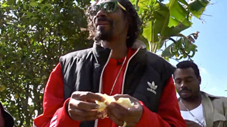 'Reincarnated' Traces Snoop Lion's Rastafarian Awakening