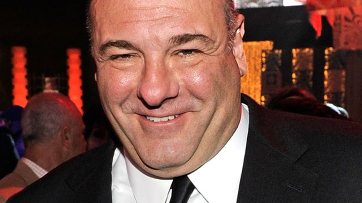 James Gandolfini to Star in New HBO Pilot