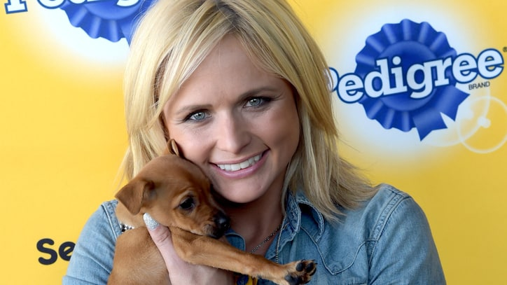 Miranda Lambert Cherishes Anonymity of Working With Pets