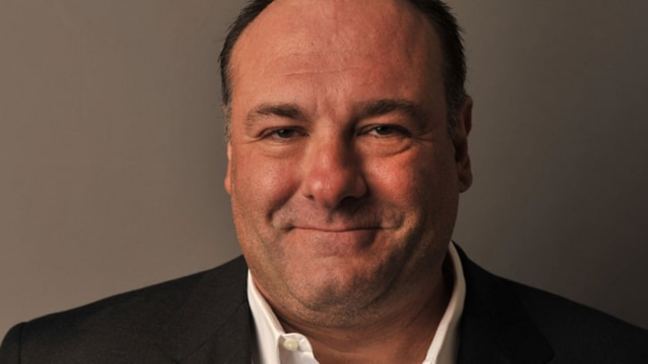 James Gandolfini Mourned Online by Fans and Colleagues