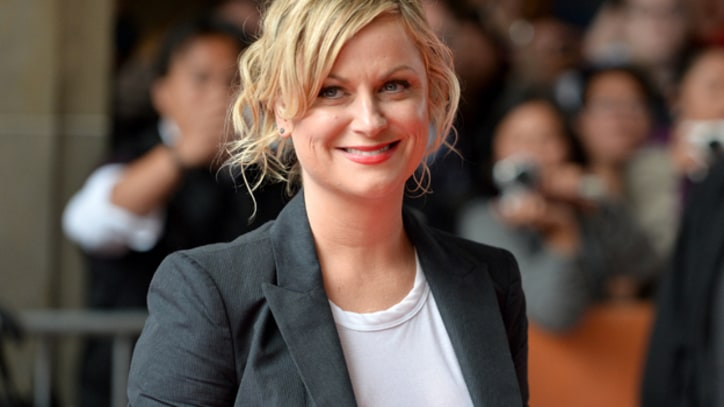 Amy Poehler Will Return to 'The Simpsons'