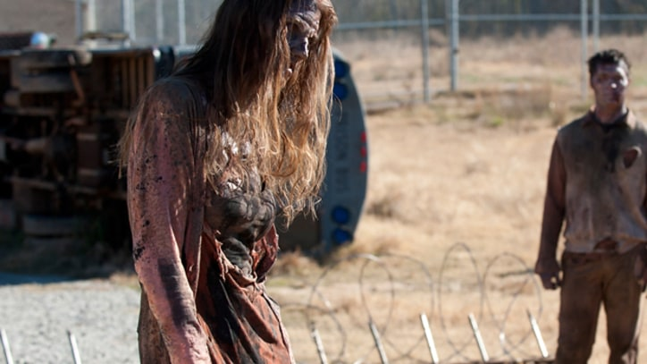 New View of the Zombie Apocalypse Heading to TV