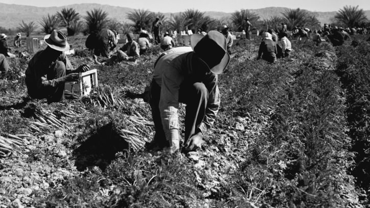 The Battle of Coachella Valley: Cesar Chavez and UFW vs Teamsters