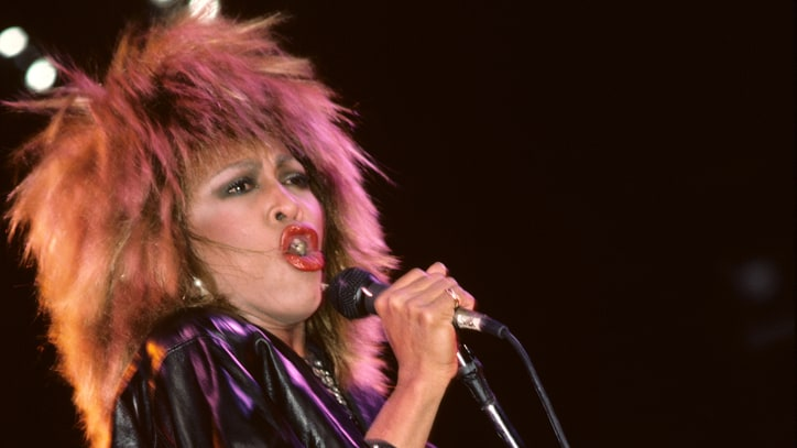 Tina Turner: Sole Survivor