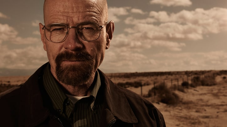 Walter White Sentenced to 12 Years in Jail