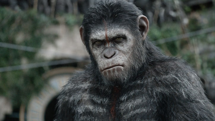 Human See, Human Do: A Complete History of 'Planet of the Apes'