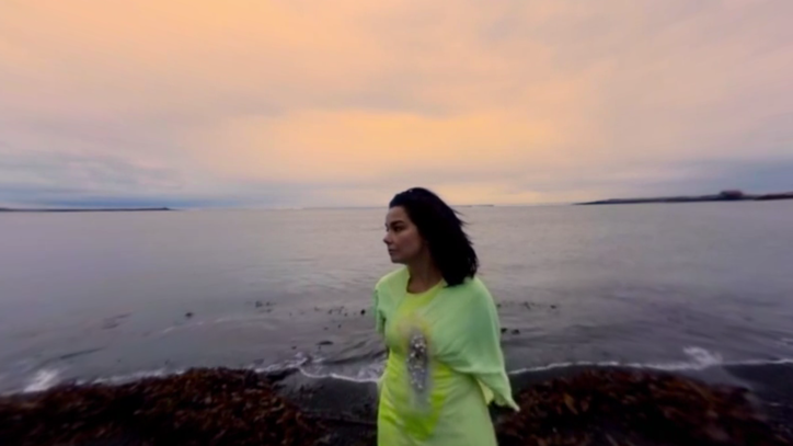 Watch Bjork's Oceanic, 360-Degree 'Stonemilker' Video