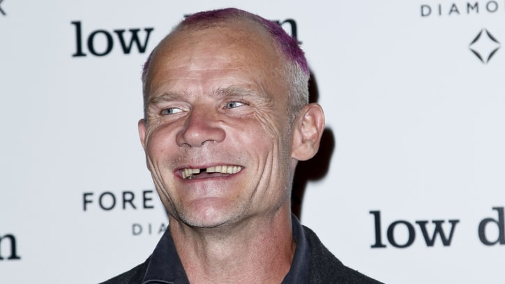 Flea's Bees: Chili Peppers Bassist Starts Apiary