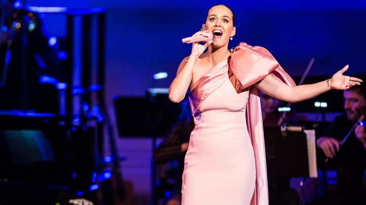 Katy Perry, Sting Stun at David Lynch's Meditation Benefit Concert