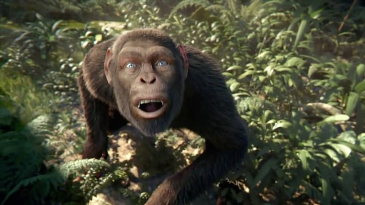 Apes Throw Jungle Dance Party in Coldplay's 'Adventure of a Lifetime' Video