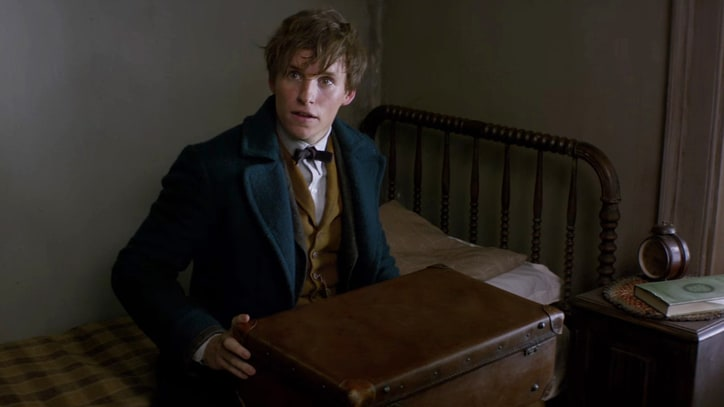 Watch Magical Trailer for 'Fantastic Beasts and Where to Find Them'