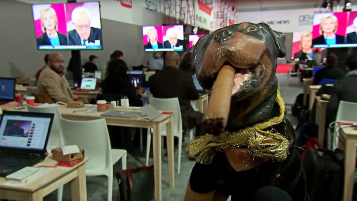 Watch Triumph the Insult Comic Dog Grill DNC Head About Debate Schedule