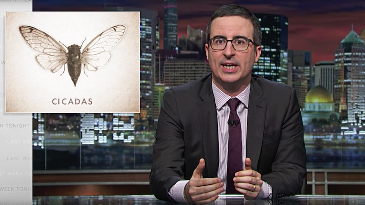 Watch John Oliver Explain Beyonce, YouTube, Jeb to Cicadas