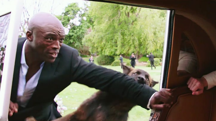 Watch Seal Fight Off Wolves in Exclusive 'Popstar' Clip