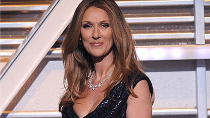 Man Charged for Breaking Into Celine Dion's House