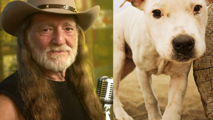 Willie Nelson Fights Discrimination – Against Dogs