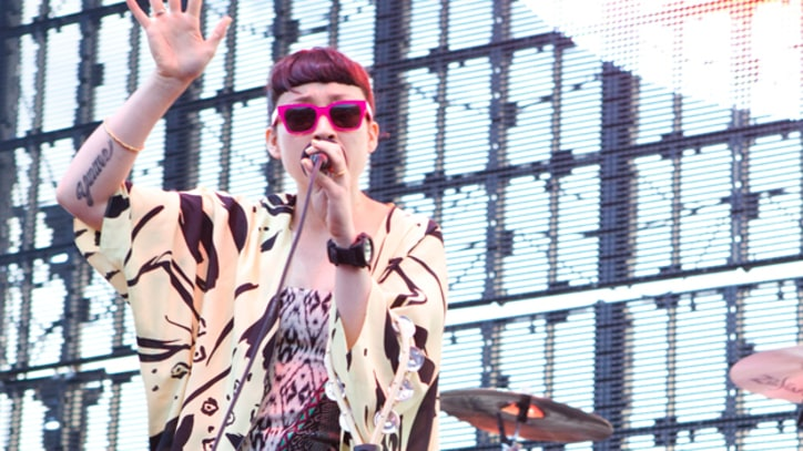 Little Dragon Talk Big Boi Collaboration and Opening for the Chili Peppers
