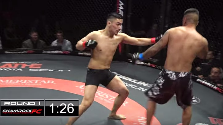 Watch Rare MMA Fight Double Knockout