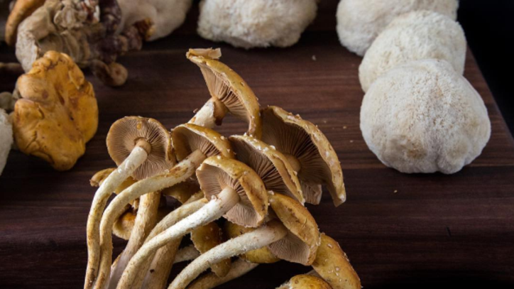 Three Vegan Mushroom Recipes That Will Make You Forget About Meat