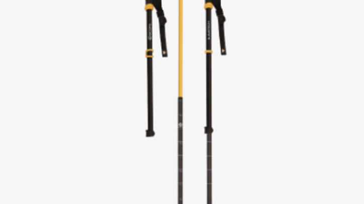 This Ski Pole Can Predict Avalanches
