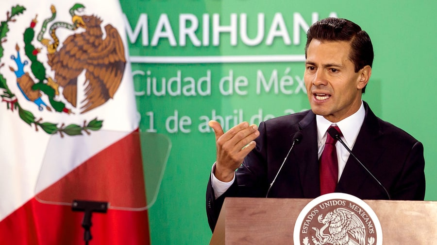 Legal Pot In Mexico: Everything You Need to Know