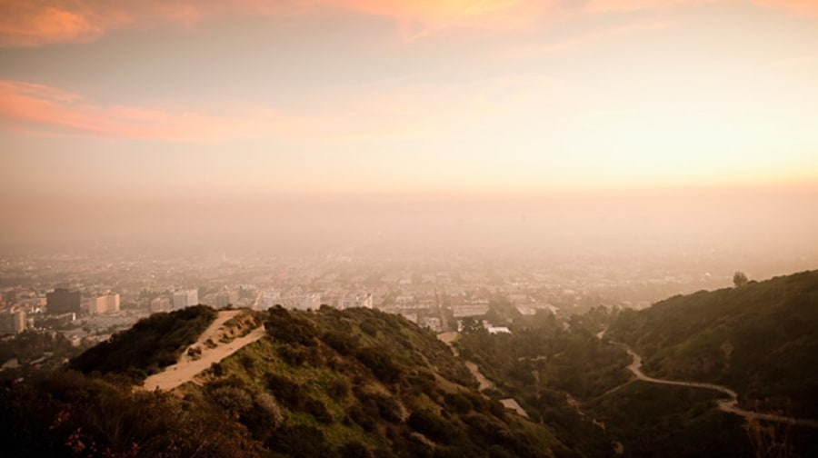 Los Angeles: Runyon Canyon