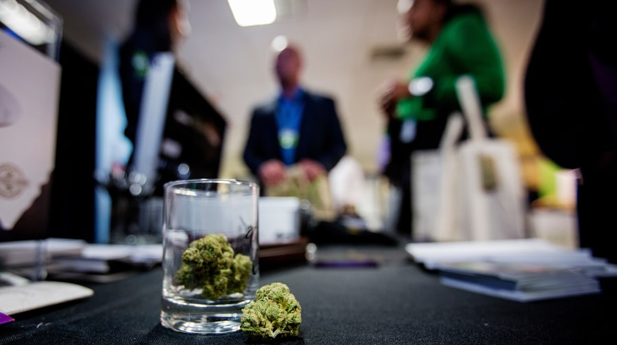 Can Oakland Help Solve the Weed Industry's Diversity Problem?