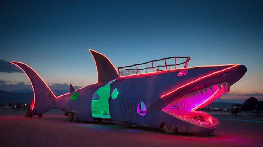 The Shark Car