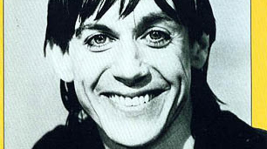Iggy Pop, 'Lust for Life'