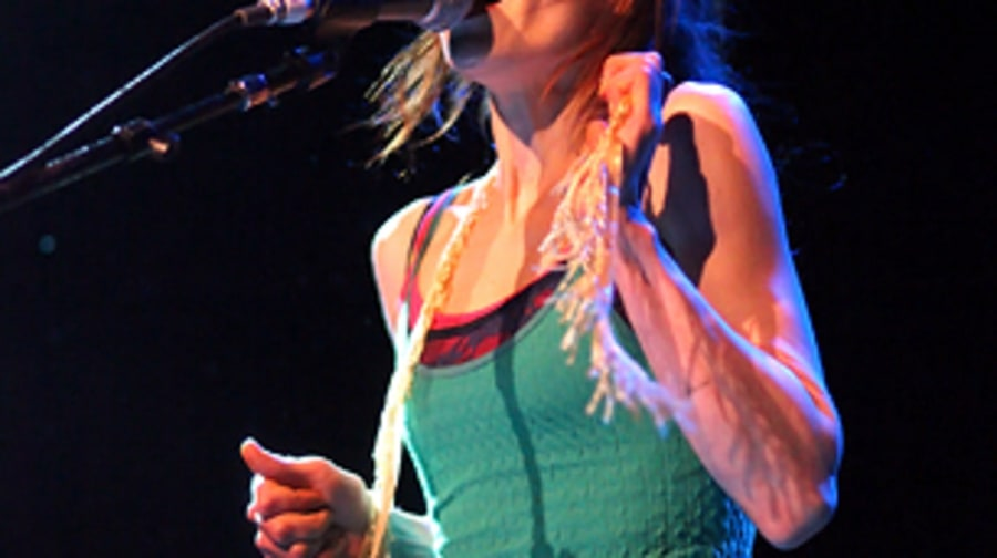 Fiona Apple, <em>The idler Wheel...</em>