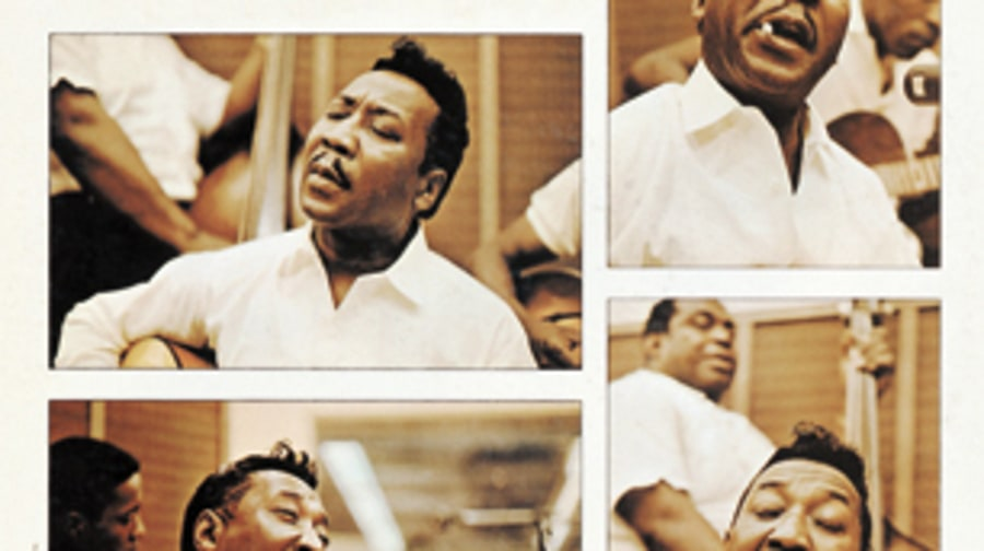 Muddy Waters, 'Folk Singer'