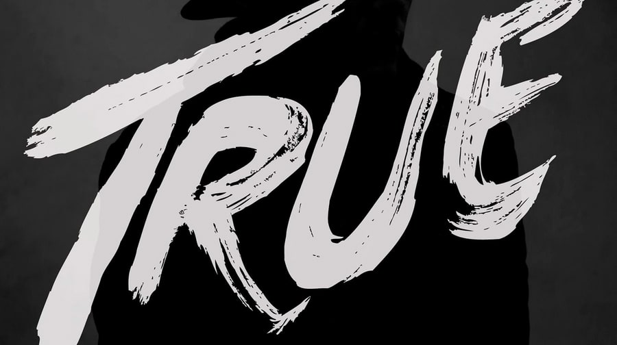 Avicii, 'True'