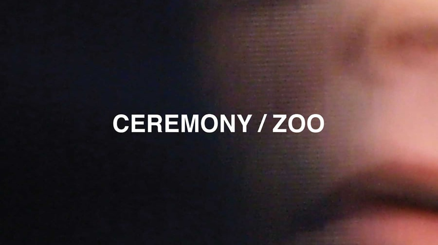 Ceremony, 'Zoo'