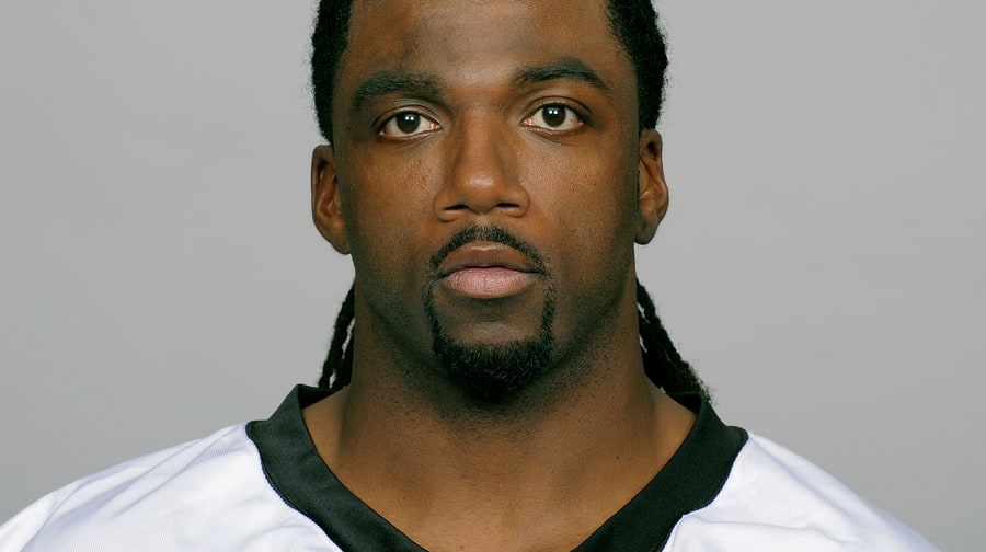 Donte Stallworth (Baltimore Ravens Wide Receiver)